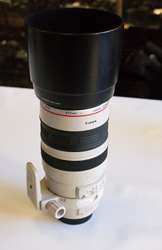 Canon 100-400 m 1:4,5-5,6 L IS Ultrasonic